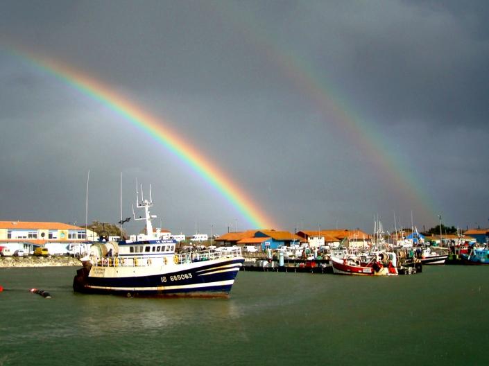 Port La Cotiniere Oleron
